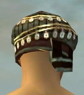 File:Ritualist Vabbian Armor M gray head back.jpg