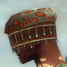 File:Ritualist Elite Exotic Armor M gray head side.jpg