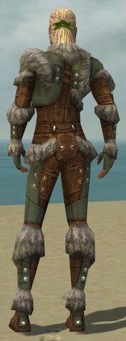 File:Ranger Fur-Lined Armor M gray back.jpg