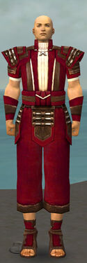 Monk Censor Armor M dyed front