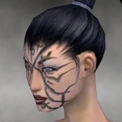 File:Necromancer Shing Jea Armor F gray head left.jpg