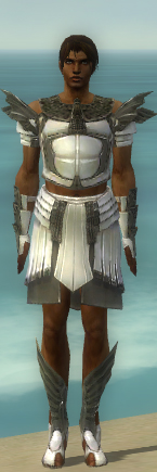 File:Paragon Ancient Armor M gray front.jpg