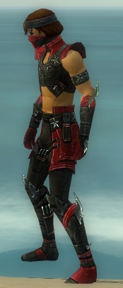 File:Assassin Luxon Armor M dyed side.jpg