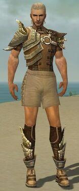 Ranger Asuran Armor M gray chest feet front