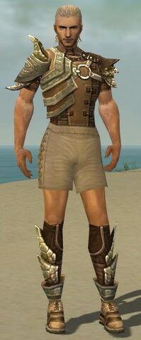 File:Ranger Asuran Armor M gray chest feet front.jpg