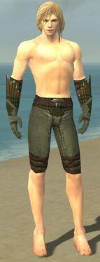 Ranger Elite Druid Armor M gray arms legs front
