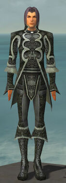 Elementalist Elite Canthan Armor M gray front