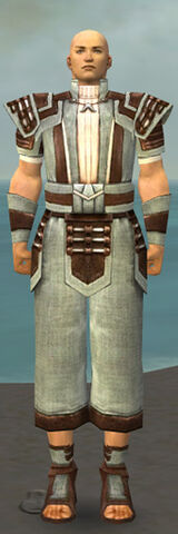 File:Monk Censor Armor M gray front.jpg