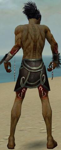 File:Necromancer Sunspear Armor M gray arms legs back.jpg