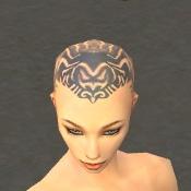 File:Monk Primeval Armor F gray head front.jpg