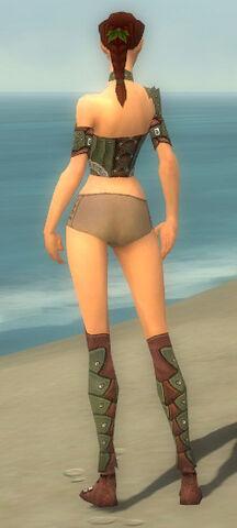 File:Ranger Elite Studded Leather Armor F gray chest feet back.jpg