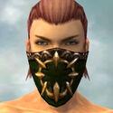 Ranger Sunspear Armor M dyed head front