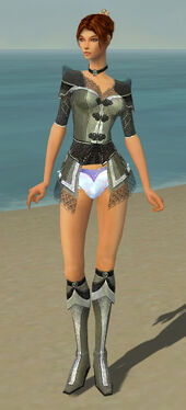 Elementalist Kurzick Armor F gray chest feet front
