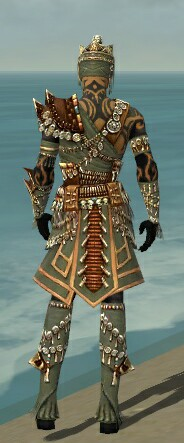 File:Ritualist Elite Imperial Armor M gray back.jpg