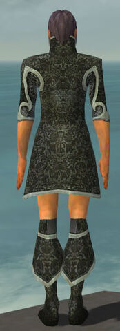 File:Elementalist Elite Canthan Armor M gray chest feet back.jpg