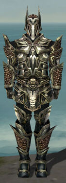 Warrior Elite Kurzick Armor M gray front