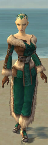 File:Monk Norn Armor F dyed front.jpg