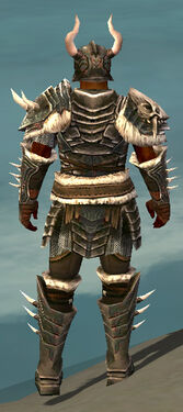 Warrior Norn Armor M gray back