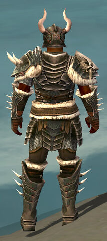 File:Warrior Norn Armor M gray back.jpg
