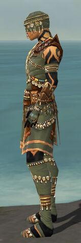 File:Ritualist Imperial Armor M gray side.jpg