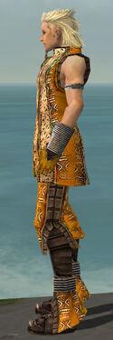 Elementalist Istani Armor M dyed side