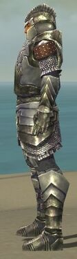 Warrior Templar Armor M gray side alternate