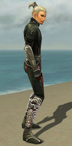 File:Assassin Deldrimor Armor M gray side.jpg