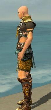 Ritualist Deldrimor Armor M dyed side