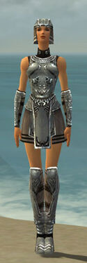 Warrior Istani Armor F gray front
