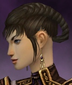 File:Monk Elite Canthan Armor F dyed earrings.jpg