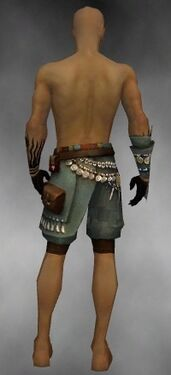 Ritualist Luxon Armor M gray arms legs back