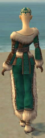 File:Monk Norn Armor F dyed back.jpg