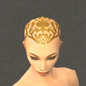 File:Monk Elite Sunspear Armor F dyed head front.jpg