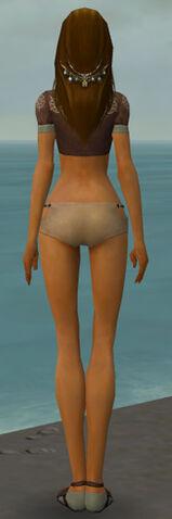 File:Dervish Sunspear Armor F gray chest feet back.jpg