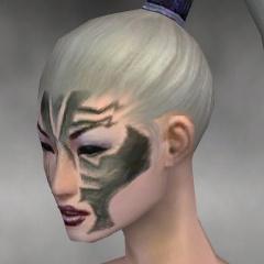 File:Necromancer Elite Luxon Armor F gray head left.jpg