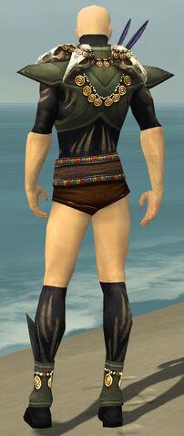 File:Ritualist Elite Kurzick Armor M gray chest feet back.jpg