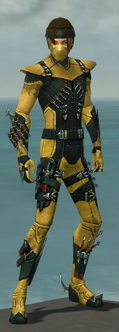 File:Assassin Seitung Armor M dyed front.jpg