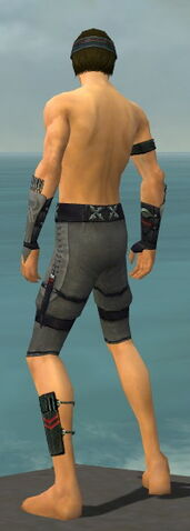 File:Assassin Shing Jea Armor M gray arms legs back.jpg