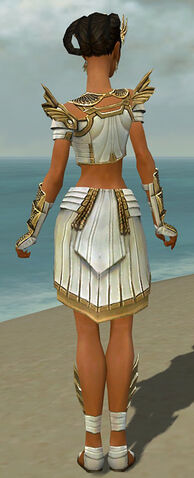 File:Paragon Ancient Armor F dyed back.jpg