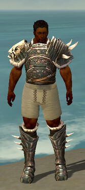 Warrior Norn Armor M gray chest feet front