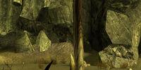 Bladed Dune Termite