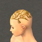 File:Monk Elite Sunspear Armor F dyed head side.jpg