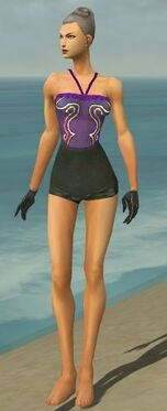 Mesmer Elite Noble Armor F gray arms legs front