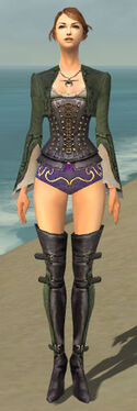 Mesmer Rogue Armor F gray chest feet front