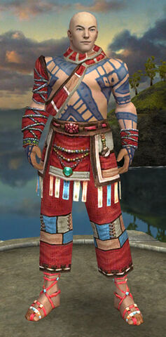 File:Monk Luxon Armor M dyed front.jpg