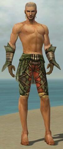 File:Ranger Elite Drakescale Armor M gray arms legs front.jpg