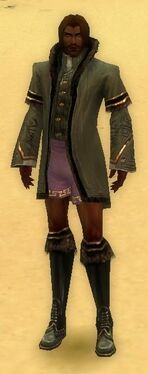 Mesmer Norn Armor M gray chest feet front