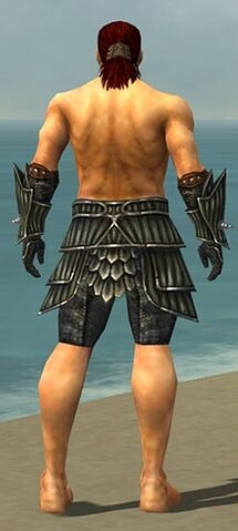 File:Warrior Wyvern Armor M gray arms legs back.jpg