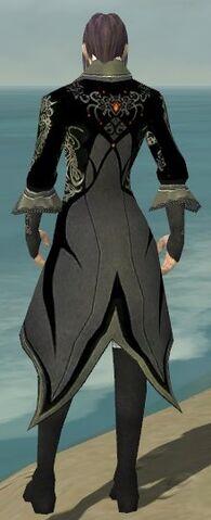 File:Elementalist Elite Kurzick Armor M gray back.jpg