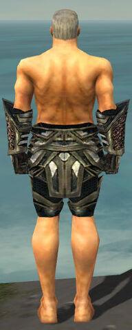 File:Warrior Elite Kurzick Armor M gray arms legs back.jpg